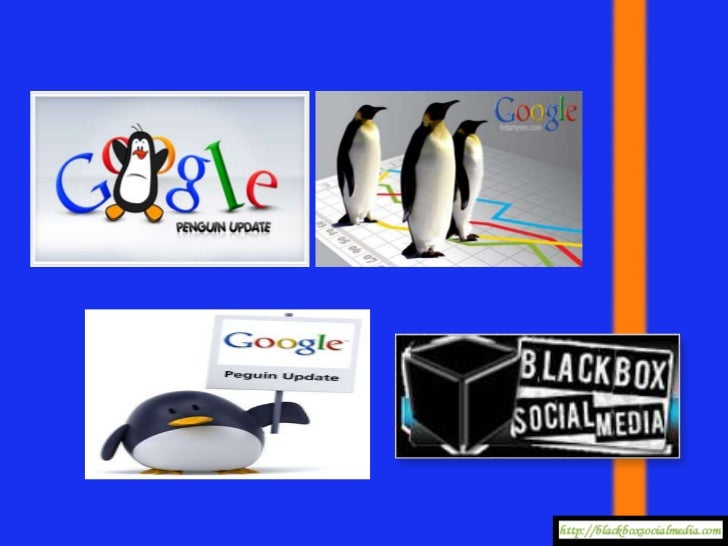 Did the GooglePenguin Update  Affect your   Website?
