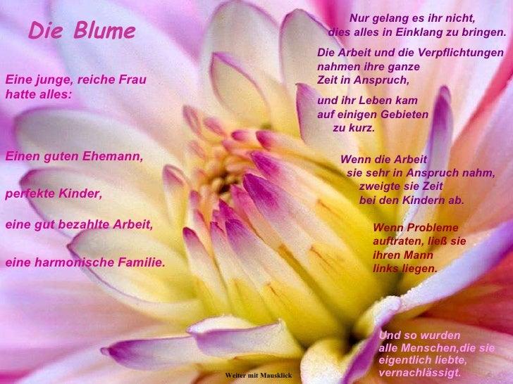 die_einzigartige_Blume
