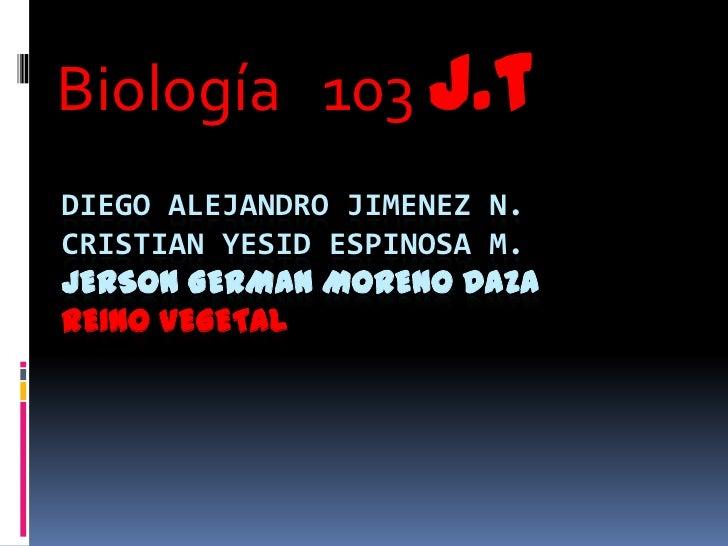 Biología 103 j.tDIEGO ALEJANDRO JIMENEZ N.CRISTIAN YESID ESPINOSA M.JERSON GERMAN MORENO DAZAREINO VEGETAL