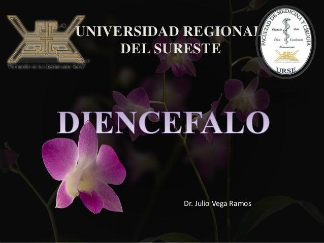 UNIVERSIDAD REGIONAL DEL SURESTE Dr. Julio Vega Ramos