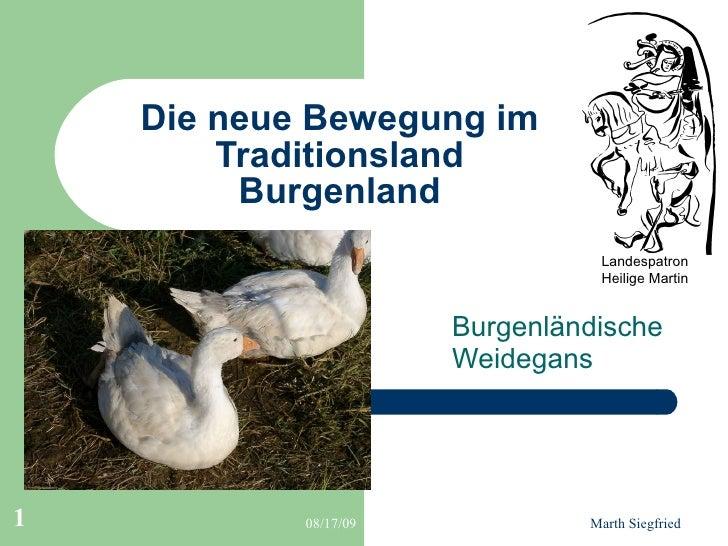 Die neue Bewegung im Traditionsland Burgenland Burgenländische  Weidegans Landespatron Heilige Martin