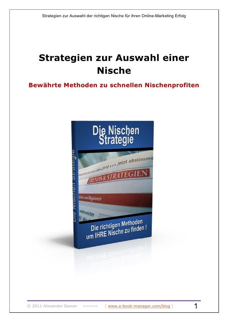 Strategien zur Auswahl der richtigen Nische für ihren Online-Marketing Erfolg     Strategien zur Auswahl einer            ...