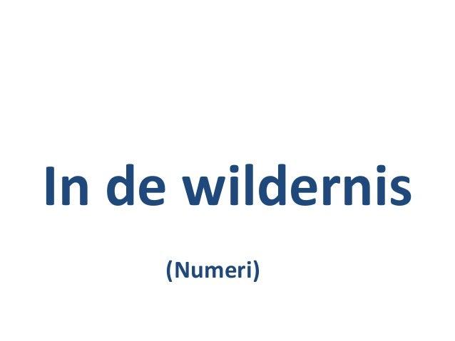 In de wildernis (Numeri)