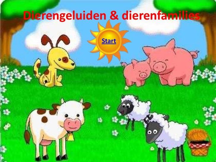 Dierengeluiden & dierenfamilies             Start