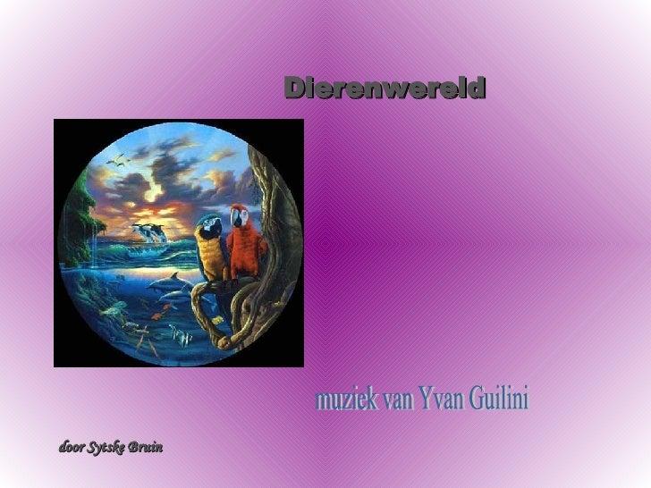 Dierenwereld muziek van Yvan Guilini door Sytske Bruin