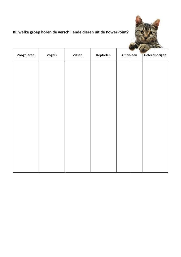 Bij welke groep horen de verschillende dieren uit de PowerPoint?       Zoogdieren      Vogels         Vissen       Reptiel...