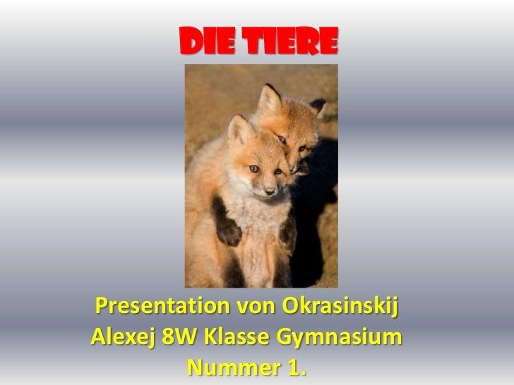 Die Tiere<br />Presentation von Okrasinskij Alexej 8W Klasse Gymnasium  Nummer 1.<br />
