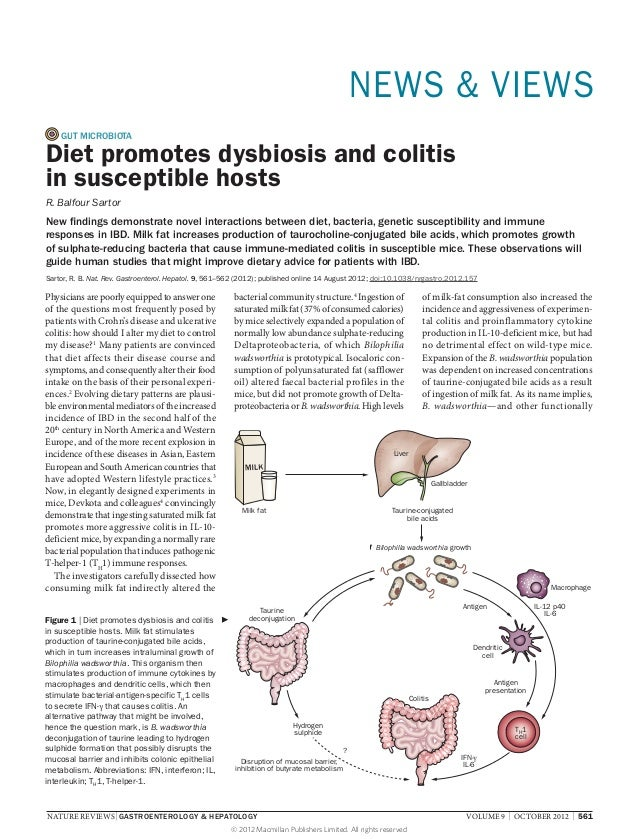 NEWS & VIEWS    GUT MICROBIOTADiet promotes dysbiosis and colitisin susceptible hostsR. Balfour SartorNew findings demonst...