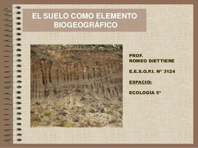 EL SUELO COMO ELEMENTO BIOGEOGRÁFICO PROF. ROMEO DIETTIERE E.E.S.O.P.I. Nº 3124 ESPACIO: ECOLOGÍA 5º