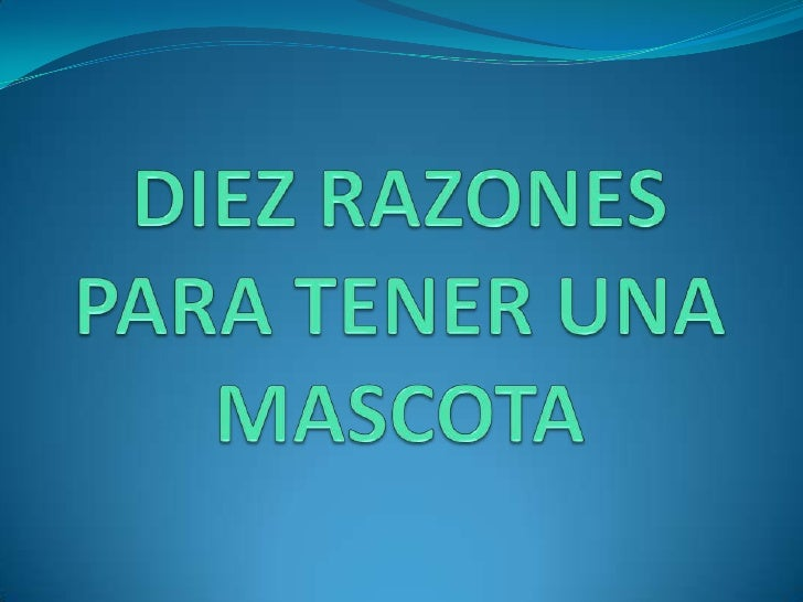 DIEZ RAZONES PARA TENER UNA MASCOTA <br />