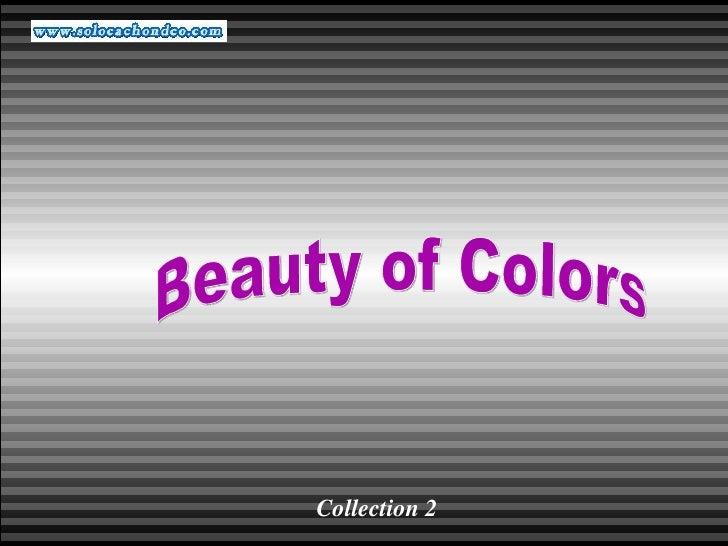 Diferencia blanco y negro y color - Solocachondeo