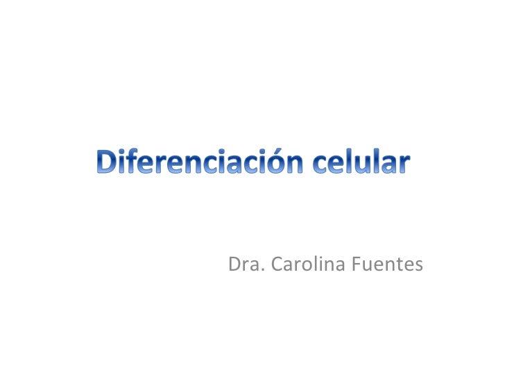 Dra. Carolina Fuentes