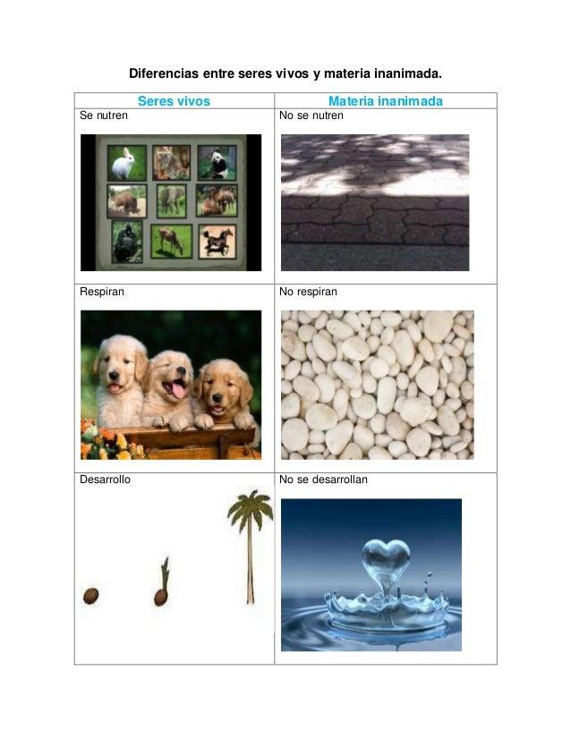 Diferencias entre seres vivos y materia inanimada for Diferencia entre yeso y escayola