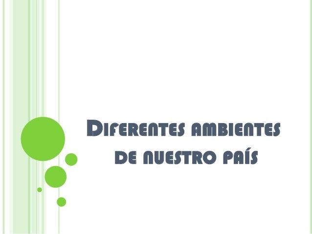 DIFERENTES AMBIENTES  DE NUESTRO PAÍS