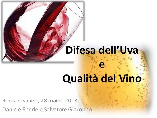 Difesa dell'UvaeQualità del VinoRocca Civalieri, 28 marzo 2013Daniele Eberle e Salvatore Giacoppo
