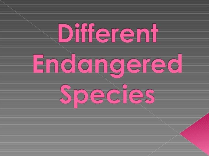 Different endangered species