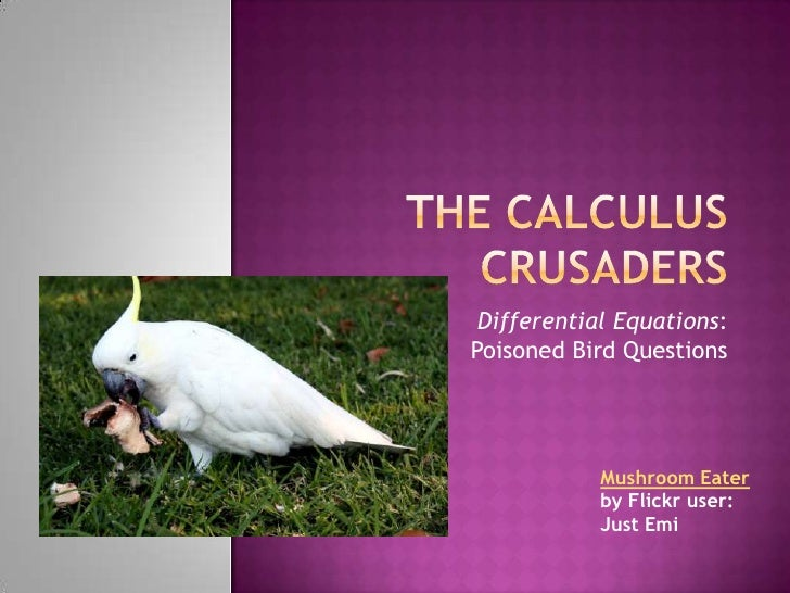 Differential Equations: Poisoned Bird Questions                 Mushroom Eater             by Flickr user:             Jus...