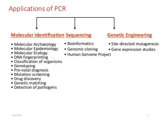 pcr technique