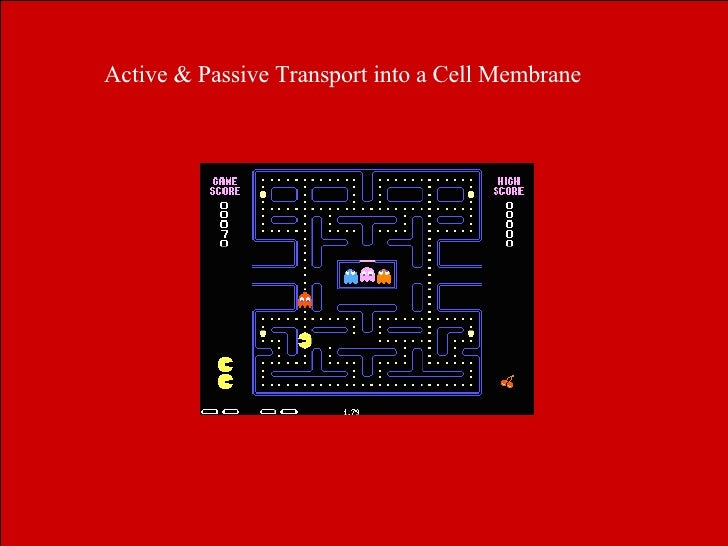 Active & Passive Transport into a Cell Membrane