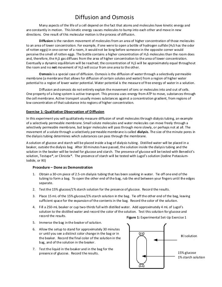 Printables. Diffusion And Osmosis Worksheet Answers. Gozoneguide ...