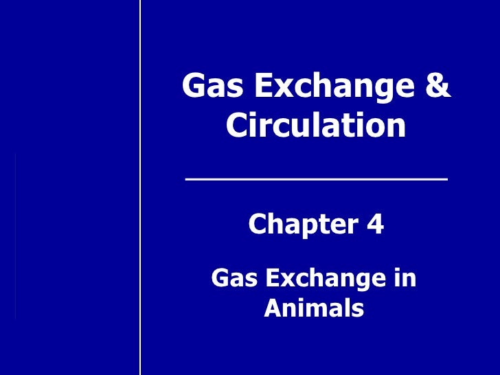 Gas Exchange & Circulation Chapter 4 Gas Exchange in Animals