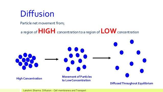 biology diffusion
