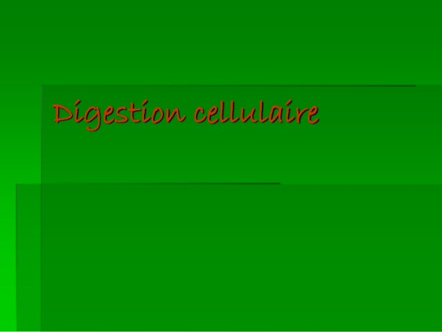 Digestion cellulaire