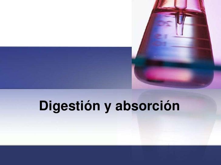 Digestión y absorción<br />