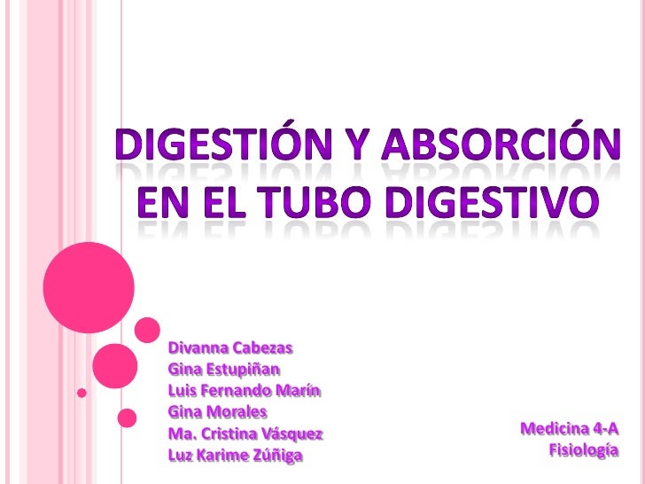 Digestion y absorcion en el tubo digestivo