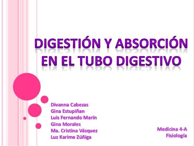 Divanna Cabezas Gina Estupiñan Luis Fernando Marín Gina Morales Ma. Cristina Vásquez Luz Karime Zúñiga Medicina 4-A Fisiol...