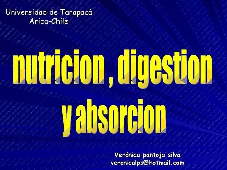 Universidad de Tarapacá Arica-Chile Verónica pantoja silva [email_address] nutricion , digestion y absorcion