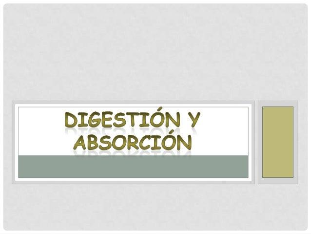 La digestión es el conjunto de mecanismos por los cuales seproduce la degradación de los alimentos y sutransformación en m...