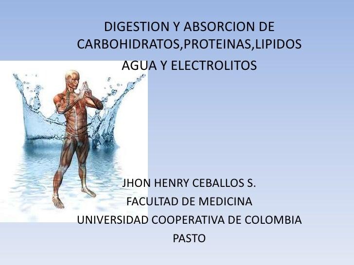 DIGESTION Y ABSORCION DE CARBOHIDRATOS,PROTEINAS,LIPIDOS<br />AGUA Y ELECTROLITOS<br />JHON HENRY CEBALLOS S.<br />FACULTA...
