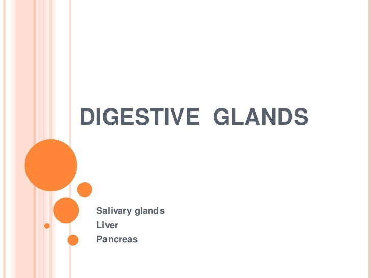 Monogastric Stomach   Anatomy  26 Physiology further Overview Ovaries also 9439441 together with Endo03 furthermore Portal circulation. on pancreas gland diagram