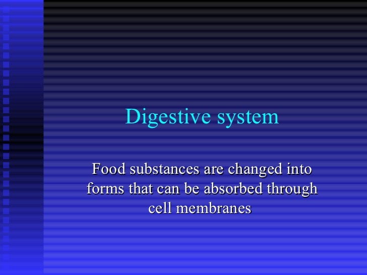 Digestive system Food substances are changed into forms that can be absorbed through cell membranes