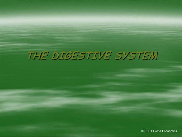 THE DIGESTIVE SYSTEM © PDST Home Economics