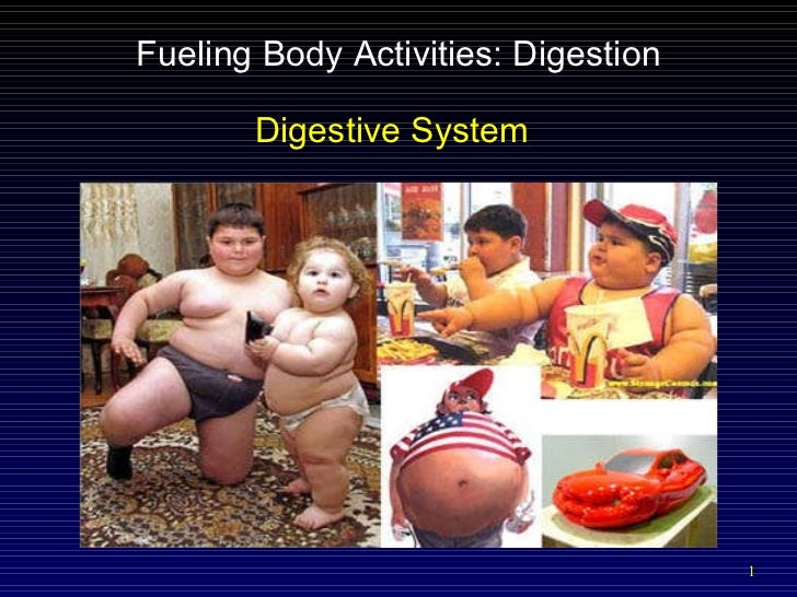 Fueling Body Activities: Digestion Digestive System