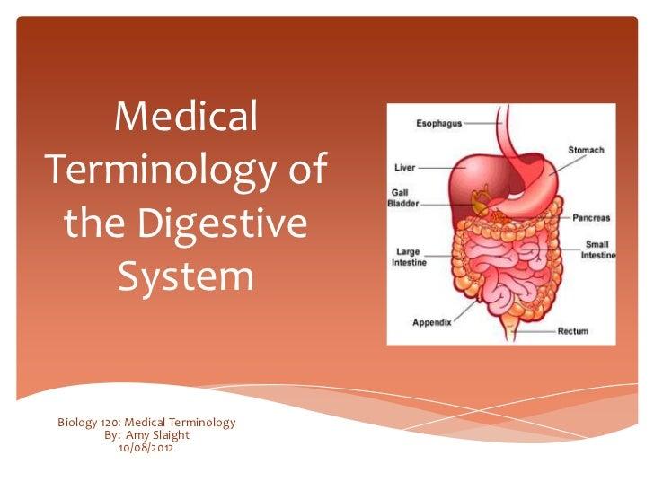 Digestive System Medical Terminology