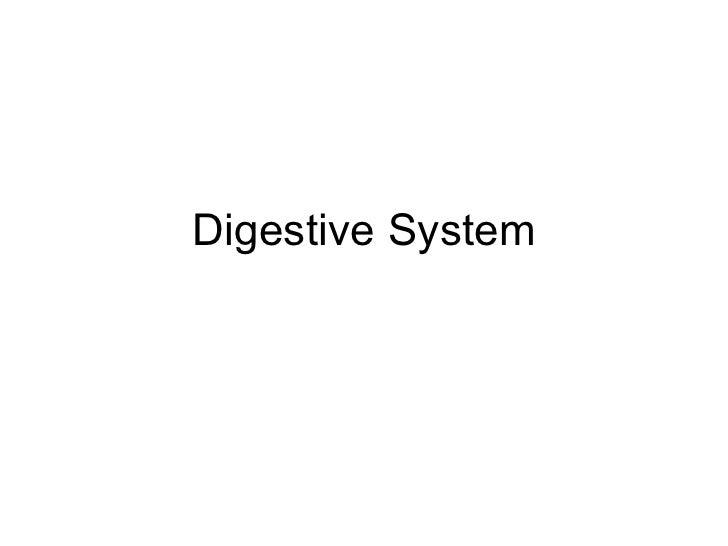 Digestive System Ppt