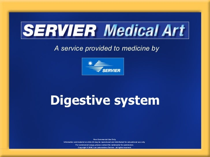 A service provided to medicine byDigestive system                                      Non Commercial Use Only   Informati...