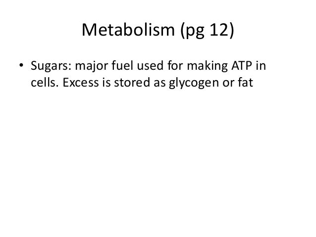 Metabolism (pg 12)• Sugars: major fuel used for making ATP incells. Excess is stored as glycogen or fat