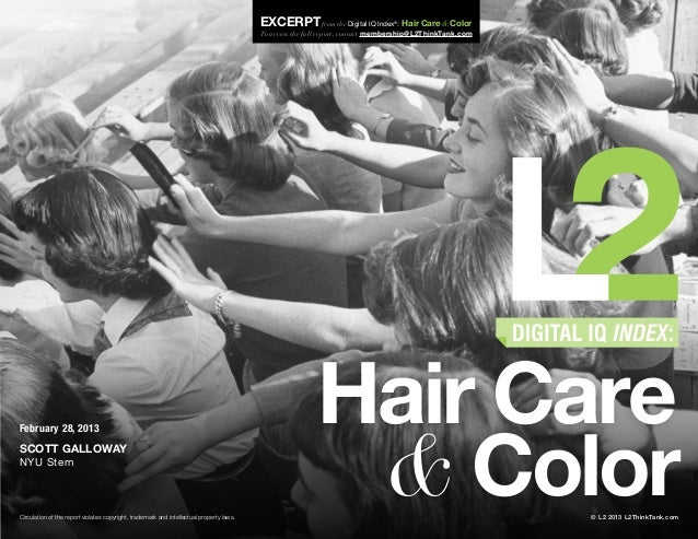 2013 Digital IQ Index: Hair Care & Color