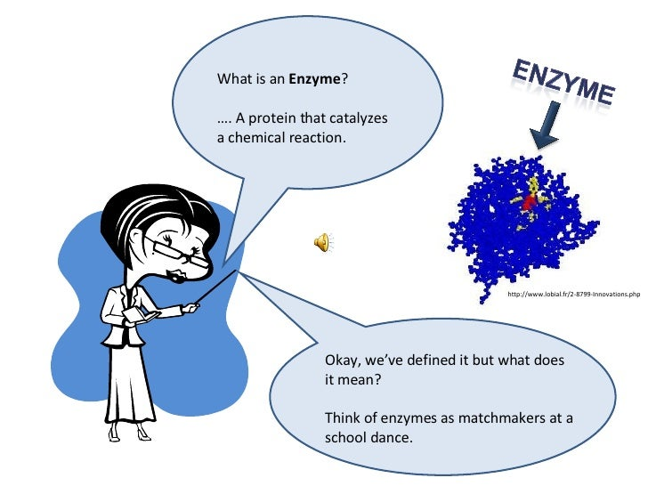 What is an  Enzyme ?  … . A protein that catalyzes a chemical reaction.  Okay, we've defined it but what does it mean? Thi...