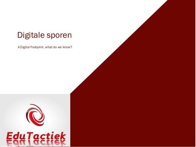 Digitale sporenA Digital Footprint, what do we know?
