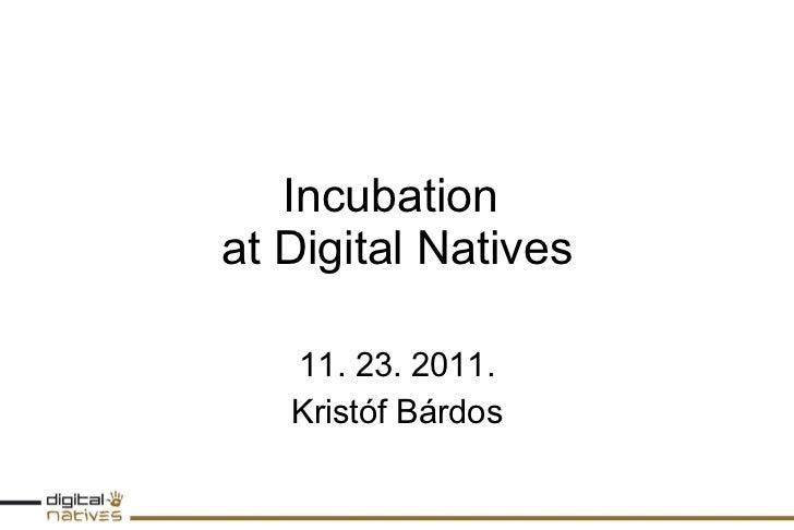 Incubation  at Digital Natives 11. 23. 2011. Kristóf Bárdos
