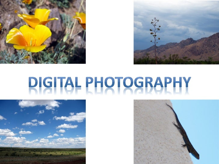 Digital photography for kids