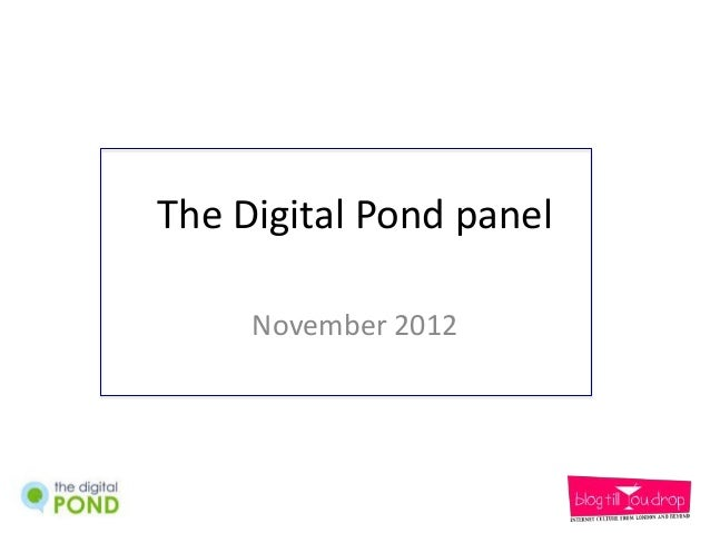 The Digital Pond panel     November 2012