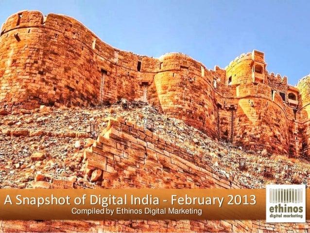 Digital Snapshot - February 2013