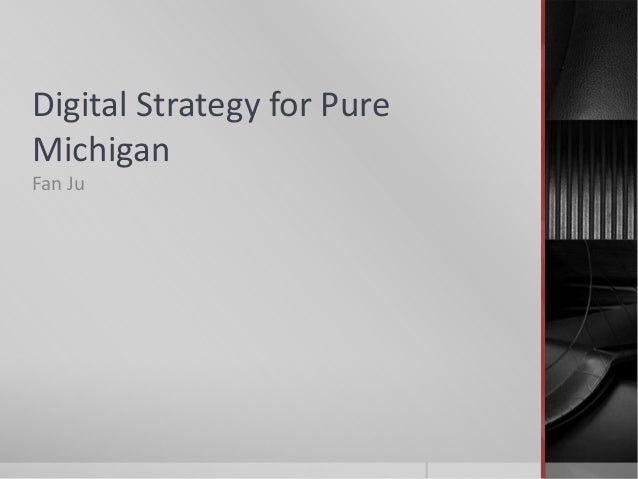 Digital Strategy for PureMichiganFan Ju