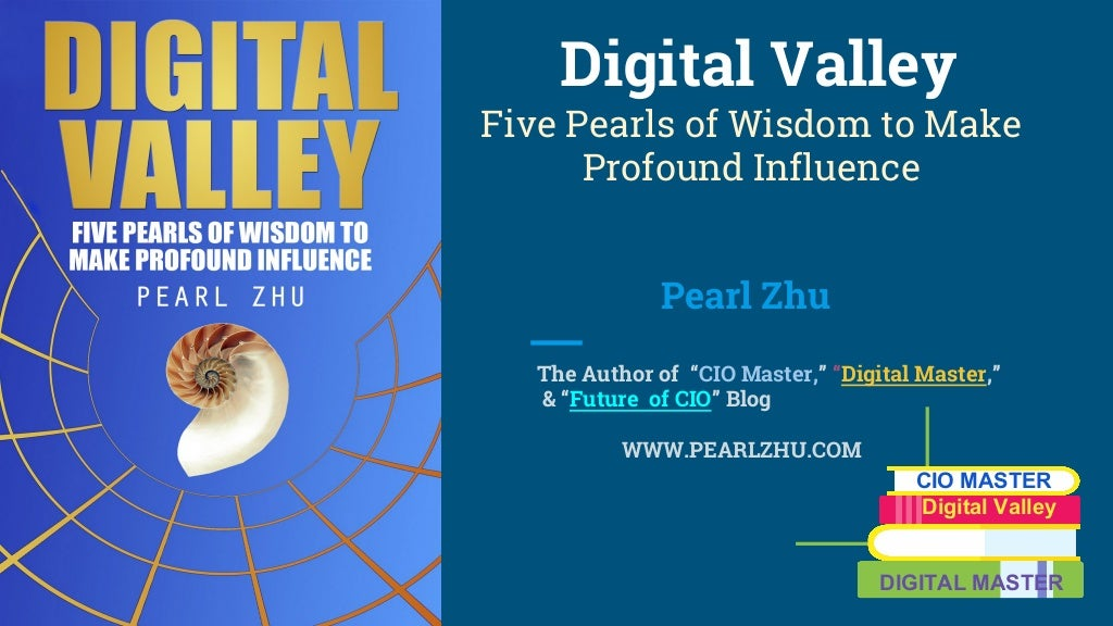Digital Valley Book Introduction